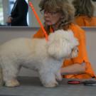 k-heike-huelsebusch---dogingstation.jpg